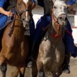 Hästuppvisning Budapest